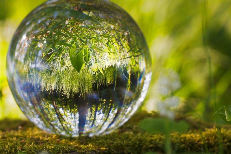 enerbrain-e-la-giornata-mondiale-dell-ambiente