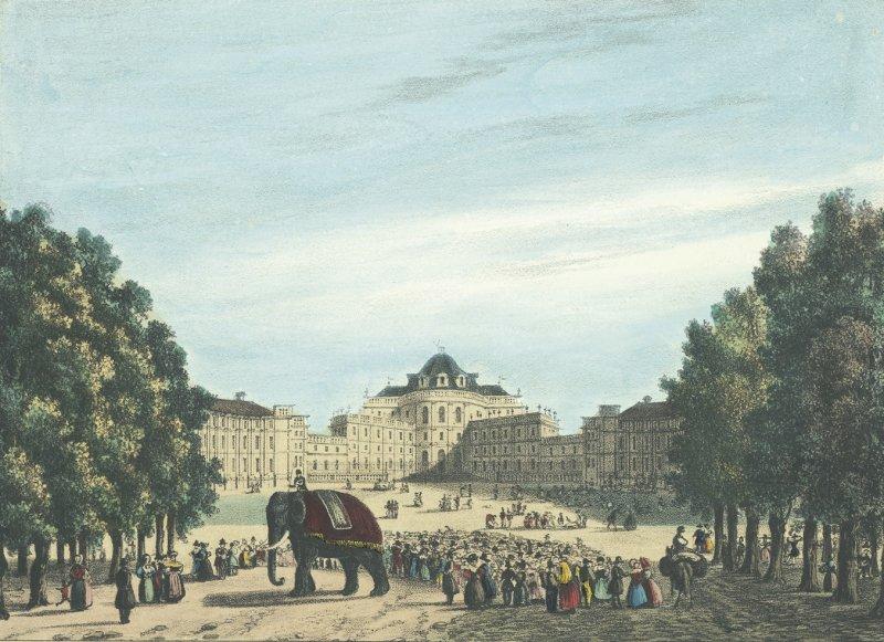 enrico-gonin-litografia-castello-di-stupinigi-con-l-elefante-fritz-1836-archivio-storico-della-citt-di-torino-9302