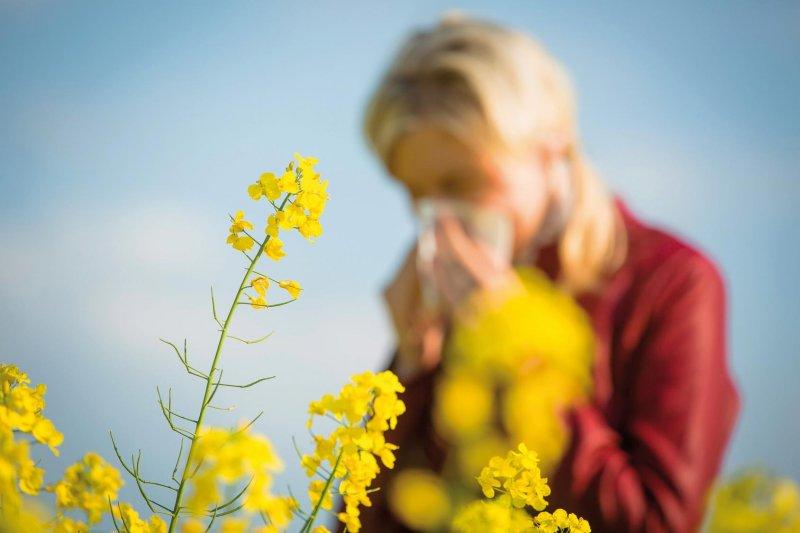 midas-allergia-primavera