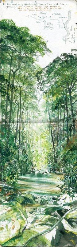 stefano-faravelli-verde-stupore-madagascar-acquerello-su-moleskine-cm42x13-2014-16434
