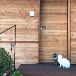 dierre porta blindata synergy out installazione curata da habitare di alessandro viliotti