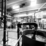Kerasan   produzione negli stabilimento di Civita Castellana (VT) 3
