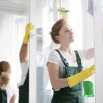Navello pulizia finestre in legno
